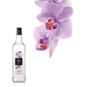 Sirop 1883 Orhidee-Orchid