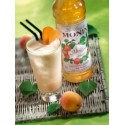 Sirop APRICOT - CAISE